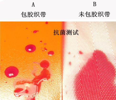 TPU织带抗菌测试